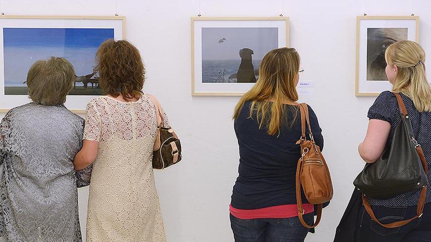Christina Kraus zeigt auf einem ihrer Acrylbilder ihren Hund Juniper, der am Meeresufer sehnsuchtsvoll einer Möwe nachblickt.