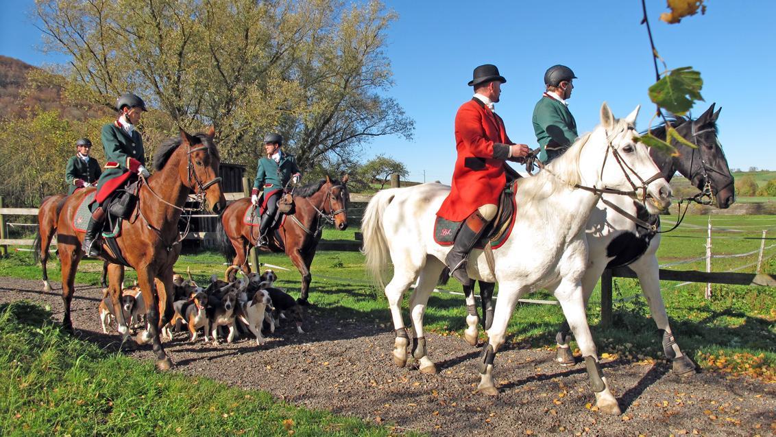 """Zwischen den Meuteführern nahmen die Beagles die Spur des """"Fuchses"""" auf und führten die Jagdgesellschaft an."""