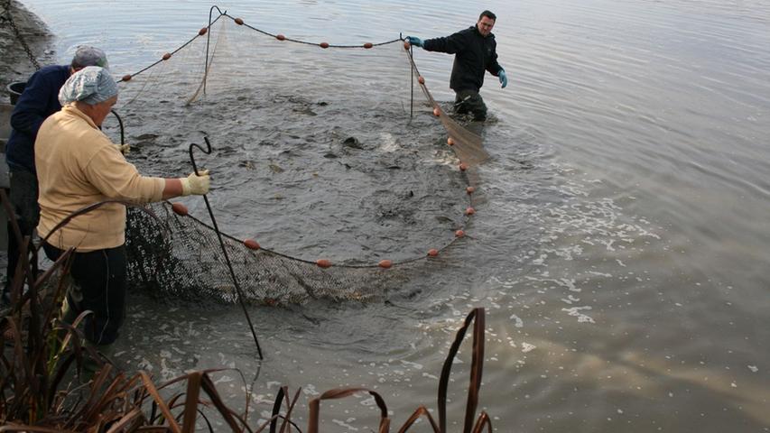 ...taten die emsigen Fischerarbeiten keinen Abbruch.