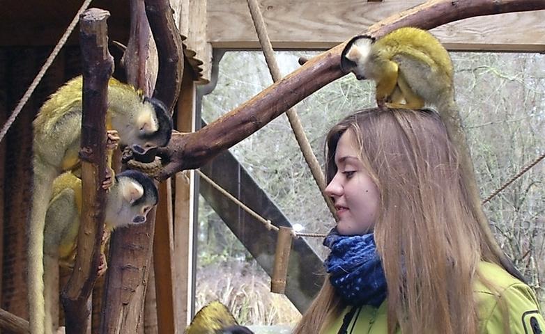 So viele Tiere wie der Tiergarten hat - 2792 aus 291 Arten - so viel wollen die auch fressen.