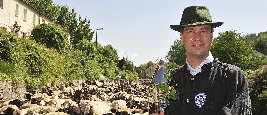 Das Umweltministerium (2008-2011) eröffnet dann zwischenzeitlich einen ganz neuen Akt in Söders Bühnenleben. So inszenierte er sich als Lammtreiber im Altmühltal mit passendem Hut und Wanderstab.