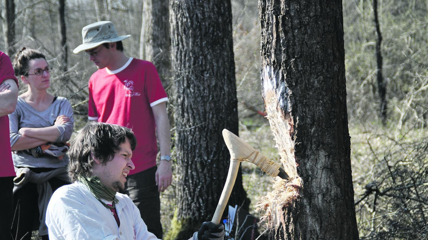 Übung macht den Meister: Benötigten die Archäologen früher noch eineinhalb Tage für das Fällen eines Baumes, so erledigen sie dies mittlerweile in eineinhalb Stunden.