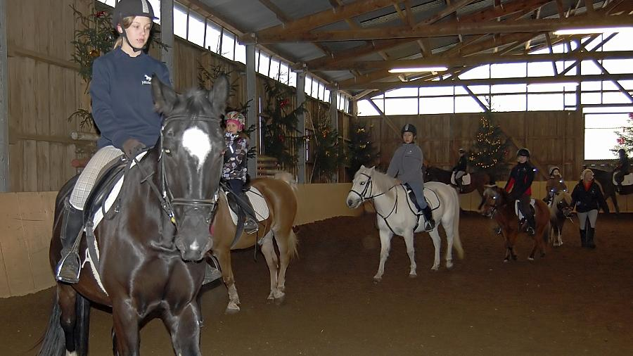 Wer in der  Dressurquadrille in der Reithalle mitreiten will, muss die Grundgangarten Schritt, Trab und Galopp beherrschen. Geführt wird ein Pferd nicht nur am Zügel, der ganze Körper des Reiters gibt die Kommandos.