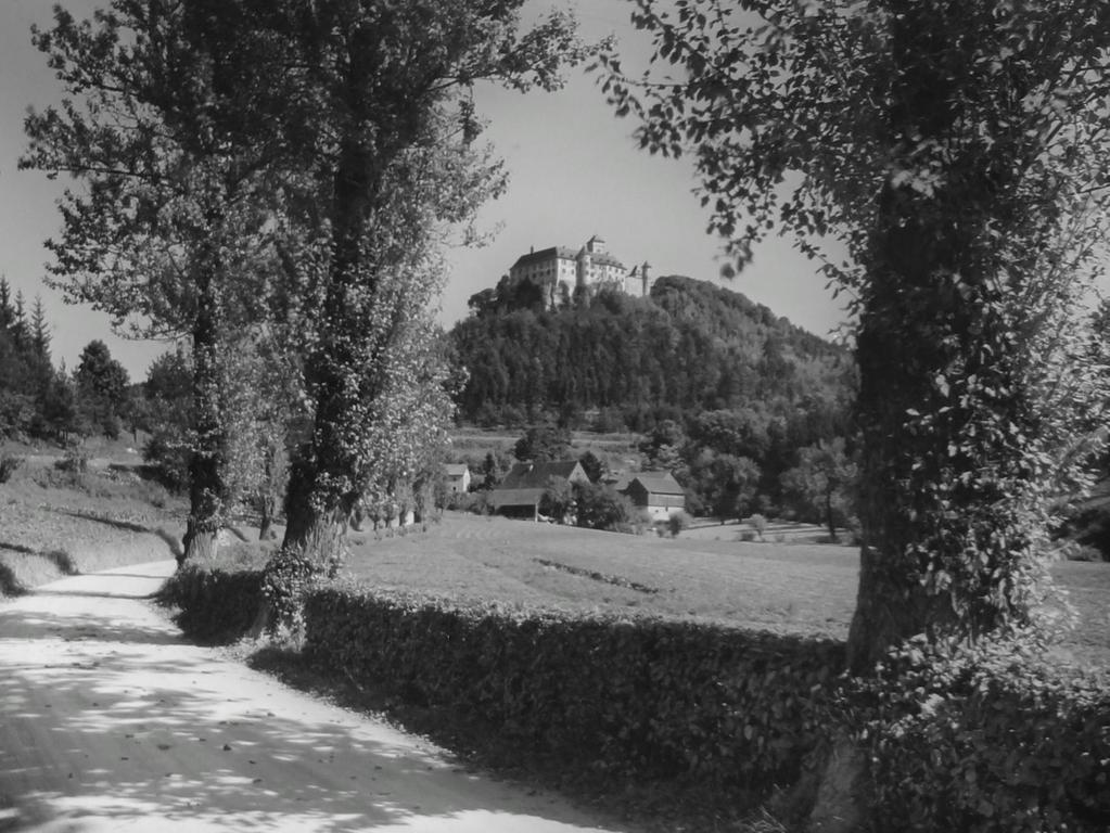 Historisches Foto, aufgenommen von Wilhelm Heinz ca. 1930 in der Fränkischen  Schweiz, digitalisiert von Max Legien  Schloss Greifenstein