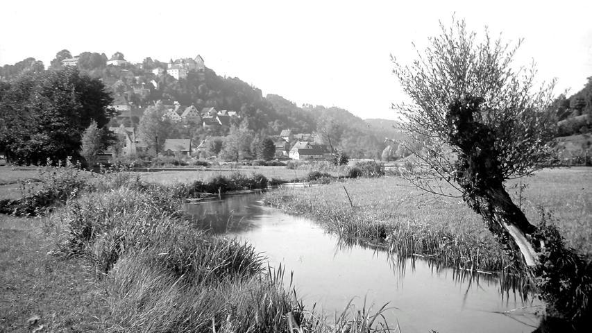 Historisches Foto, aufgenommen von Wilhelm Heinz ca. 1930 in der Fränkischen  Schweiz, digitalisiert von Max Legien  Kopfweide bei Egloffstein
