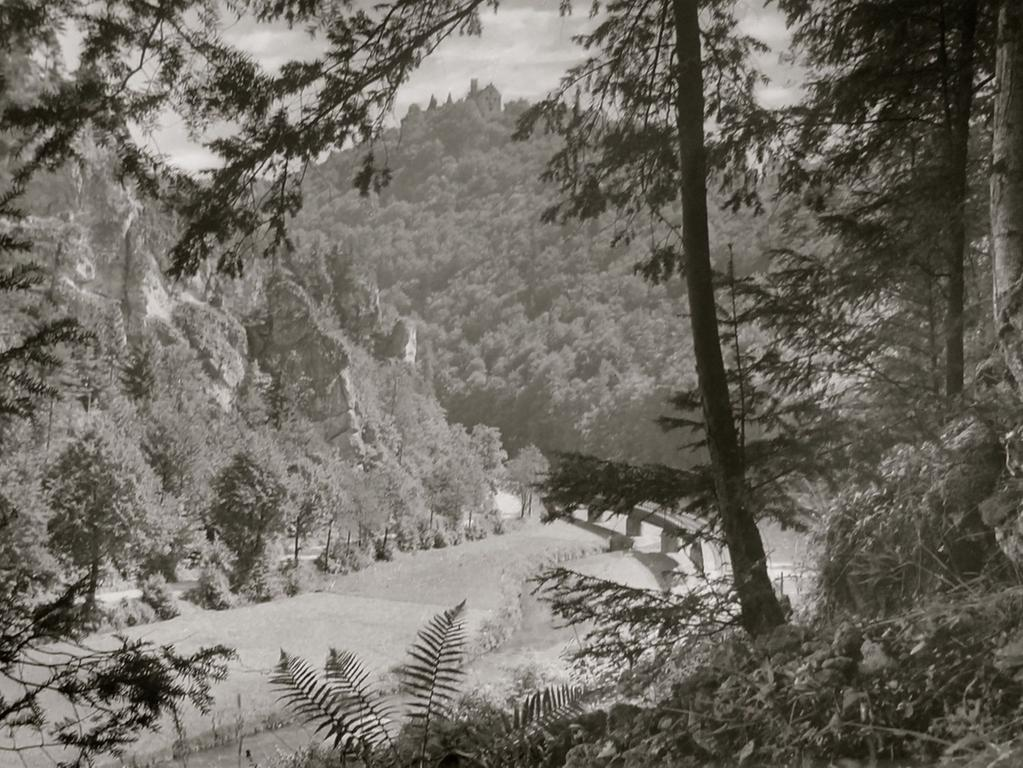 Historisches Foto, aufgenommen von Wilhelm Heinz ca. 1930 in der Fränkischen  Schweiz, digitalisiert von Max Legien  Eisenbahnbrücke