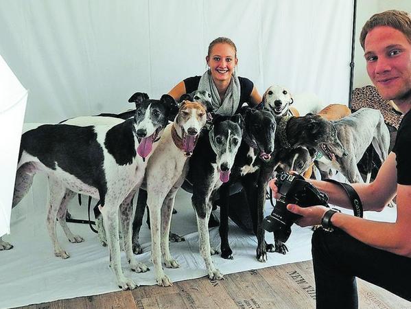 Freunde der Windhunde treffen sich zu Aufnahmen für einen Greyhound-Kalender für Spendenzwecke