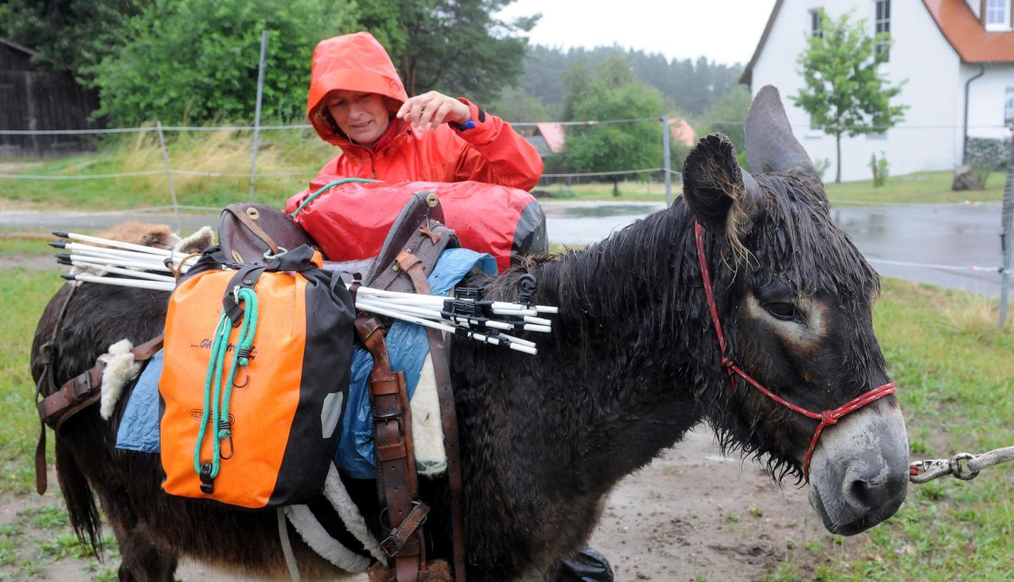 Barbara Becker zieht mit ihrer Eselstute Wanda durch Deutschland. Ihr Ziel: Kärnten in Österreich.
