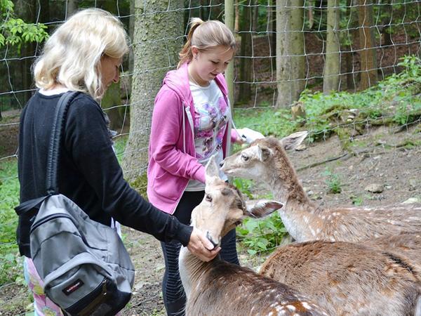 Im Wildgehege am Steinbruchsee fressen Tiere den Gästen buchstäblich aus der Hand.