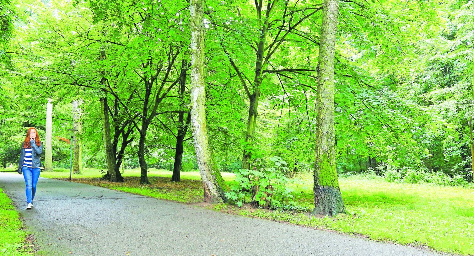 An dieser Stelle des Parks sind ohnehin Maßnahmen geplant. Die Partnerstädte würden ins Konzept passen.