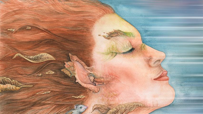 Kunst in Fürth: Illustratoren zeigen ihr Können