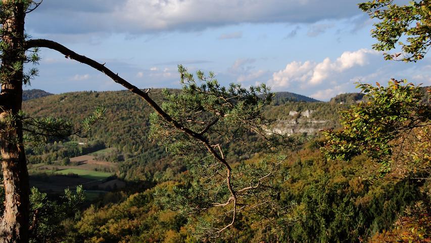 ...einen Panoramablick über Teile der Fränkischen Schweiz genießen.