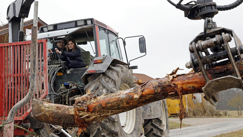 Ungewöhnliche Berufserfahrungen sammelten Schülerinnen und Schüler aus dem Liebfrauenhaus: Sie luden Baumstämme auf den Rückewagen auf. Landwirt Christian Nagel gibt die nötigen Tipps. Foto: Edgar Pfrogner