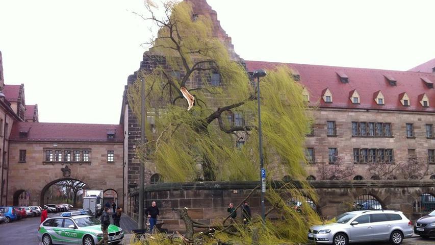 Heftig fegte der Orkan auch über die Fürther Straße in Nürnberg hinweg. Vor dem Justizpalast wurde die alte Trauerweide gespalten - Äste krachten auf den Gehweg und auch auf ein Auto. Mehr Bilder aus Nürnberg...