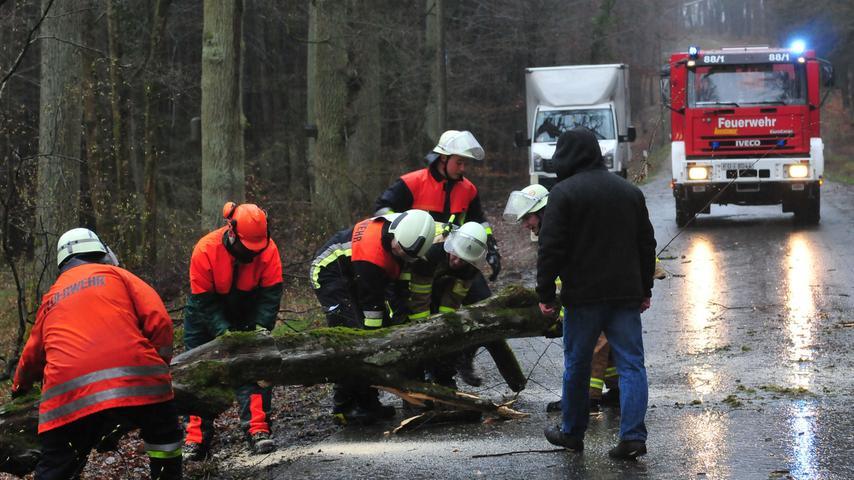 Zwischen Forchheim und Serlbach musste die Feuerwehr Forchheim einen umgestürzten Baum von der Straße beseitigen.  Mehr Bilder aus Forchheim...