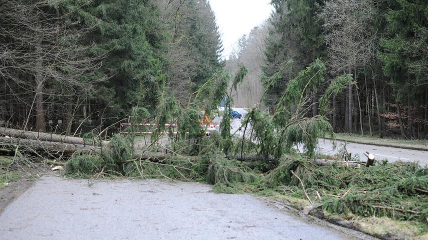 Auch im Landkreis Neumarkt legte der Sturm reihenweise Bäume um.
