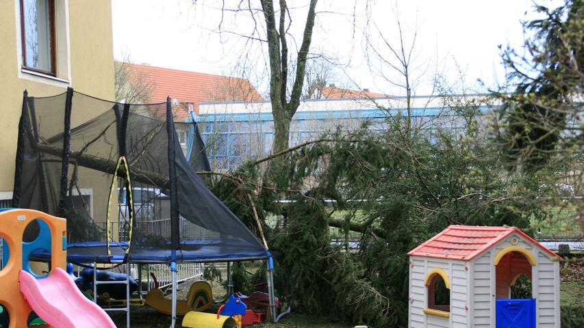 Auch auf Trampoline nahmen umstürzende Bäume keine Rücksicht.