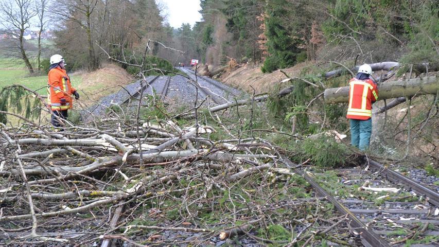 Zahlreiche Bäume waren auf die Gleise gestürzt.