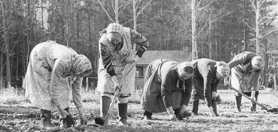 Wieder an der Tagesordnung: Frauen bei der Arbeit im Pflanzgarten.  Hier geht es zum Artikel: Frühling ist überall