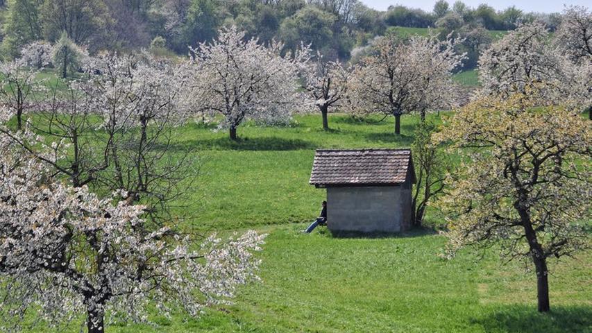 In Kalchreuth, eine der letzten Stationen auf dem Pilgerweg vor der Zielstadt Nürnberg, können die Wanderer die Landschaft vor allem zur Zeit der Kirschblüte genießen.Alle Infos zur Strecke und einzelnen Etappen gibt es hier.