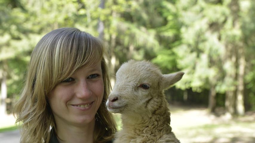 Tierpflegerin Sandra Weber mit einem kleinen Heidschnucken-Lamm, dass per Hand  aufgezogen werden muss. In diesem Fall hat es mit der Mutterliebe nicht  geklappt.
