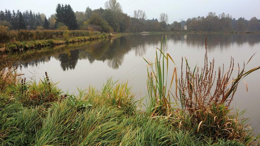 Ruhig und beschaulich ist es rund um den Dennenloher See im Landkreis Ansbach, dem kleinsten See im Fränkischen Seenland. Am West- und Ostufer können Wasserratten den Sommer genießen. Mit Liegewiesen und Kiosk, Seehausgaststätten, Kinderspielplatz, Wassertretbecken, Bootsverleih, Umkleidekabinen und Duschen lässt sich hier ein sorgloser Tag verbringen. Auch einen Campingplatz gibt es am Ufer. Adresse: Dennenloher Stausee 1 in 91743 Unterschwaningen