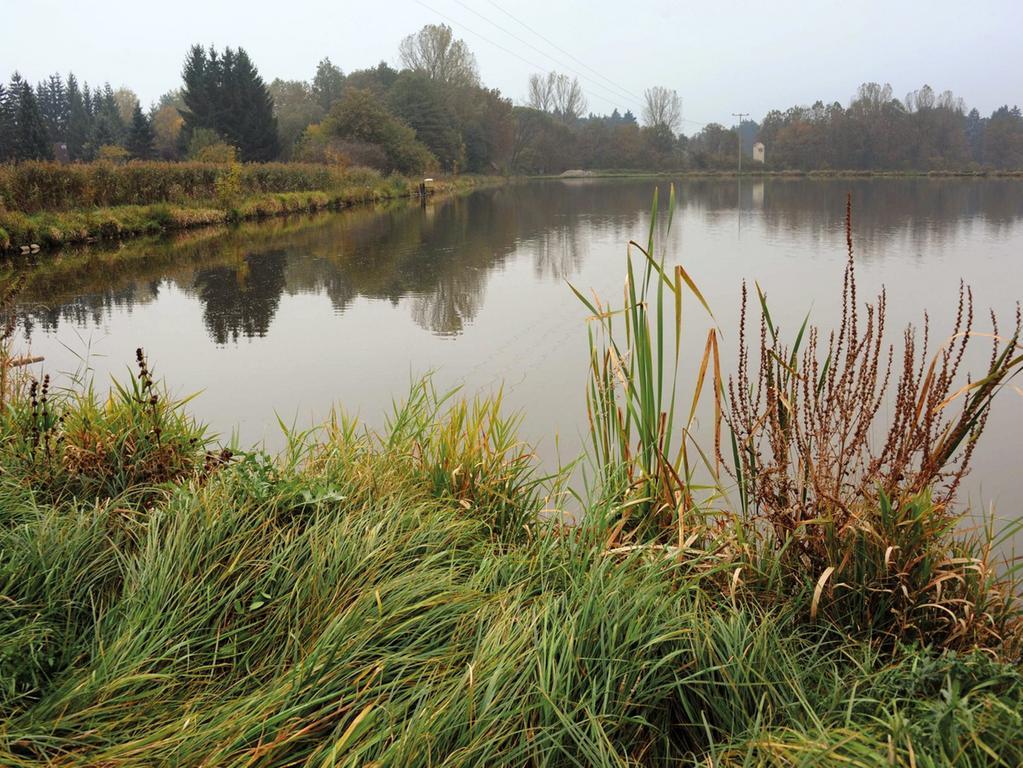 Fotograf : Fritz-Wolfgang Etzold - Dennenloher Weiher - Herbststimmung ,  14.10.2010.. ..