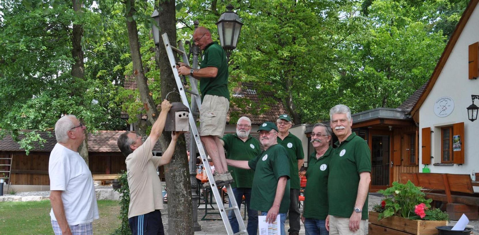 Vogelwart Wolfgang Huber befestigt die letzte Nisthilfe am Baum des Städtischen Kellerhauses. Der Verein der Vogelfreunde und der Kellerbergverein haben sich für diese Aktion zusammengetan.