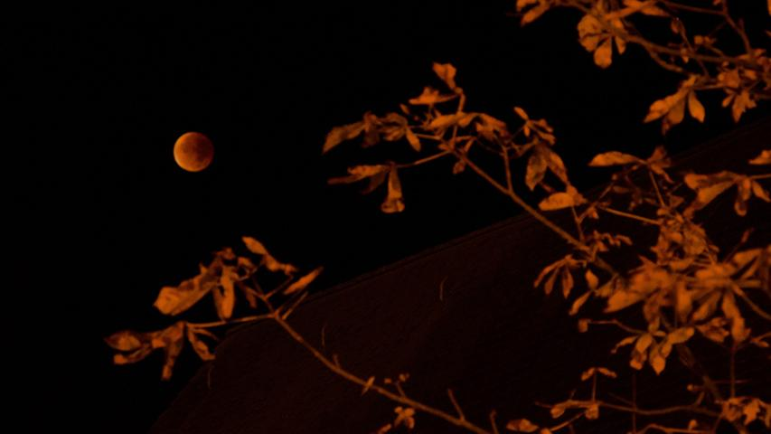 Dieses Foto vom XXL-Blutmond erreicht uns aus Hüttenbach. Es enstand in den frühen Morgenstunden.