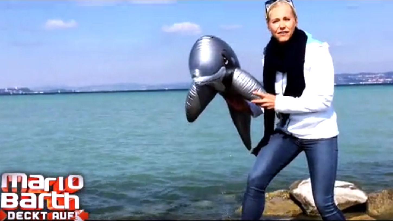 Szene aus dem Beitrag zur Delfinlagune in Nürnberg.