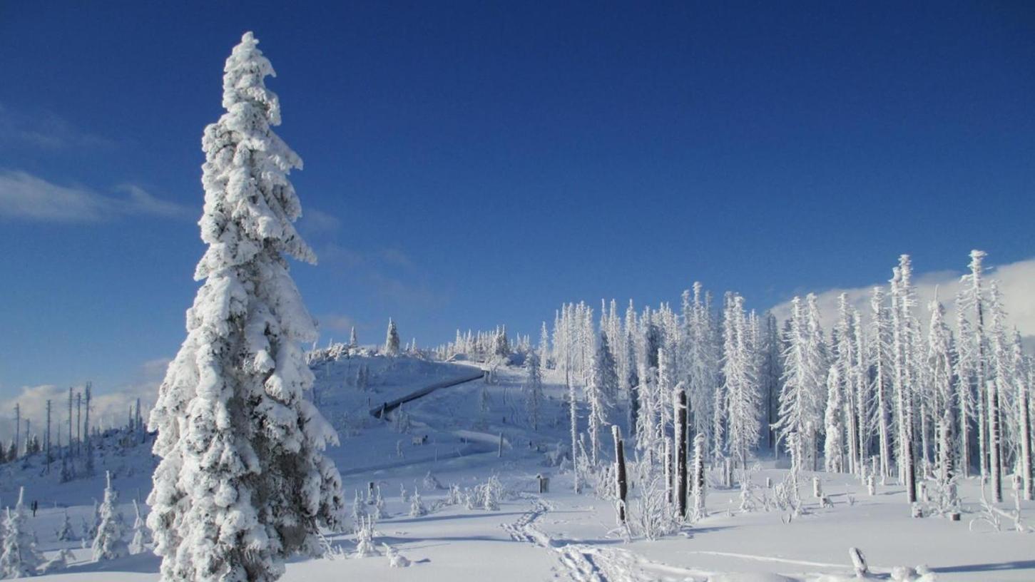 """""""Kanada vor der Haustüre"""" — so tief verschneit kann der Böhmerwald sein."""