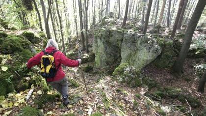 Archäologischer Rundwanderweg auf dem Hochberg bei Mittelburg im Nürnberger Land/Hersbrucker Schweiz.