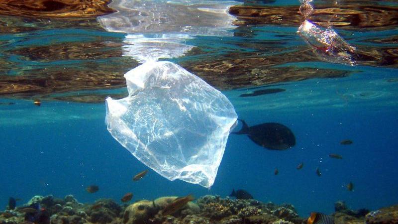 Zehn Dinge, die Sie über Plastik wissen müssen