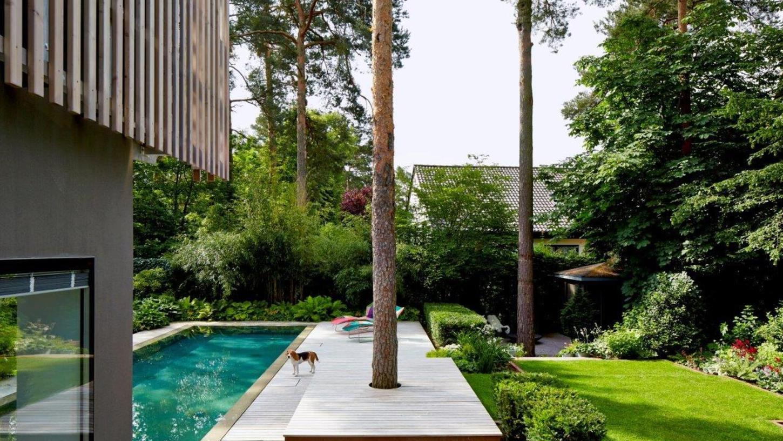 Im Garten nimmt die üppige Bepflanzung den Anlagen um den Pool die Strenge.