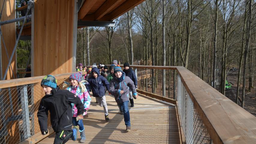 Der 650 Meter lange Holzpfad windet sich kreisförmig in die Höhe.