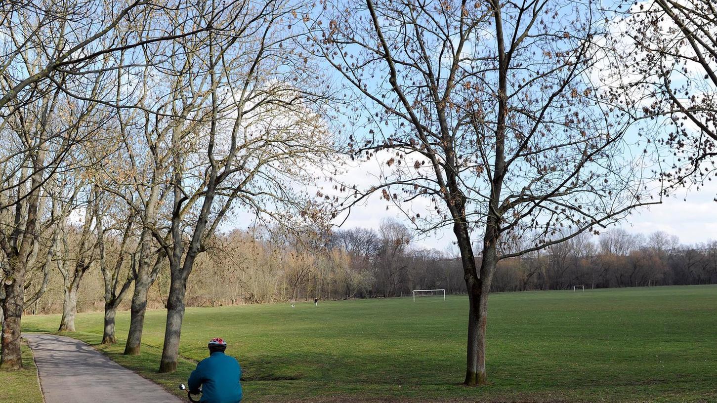 """Naturschützer wollen eine """"Aufrüstung"""" des Jedermann-Sportplatzes am Friedhofweg verhindern, für den MTV bietet sich die Fläche als Trainingsgelände an."""
