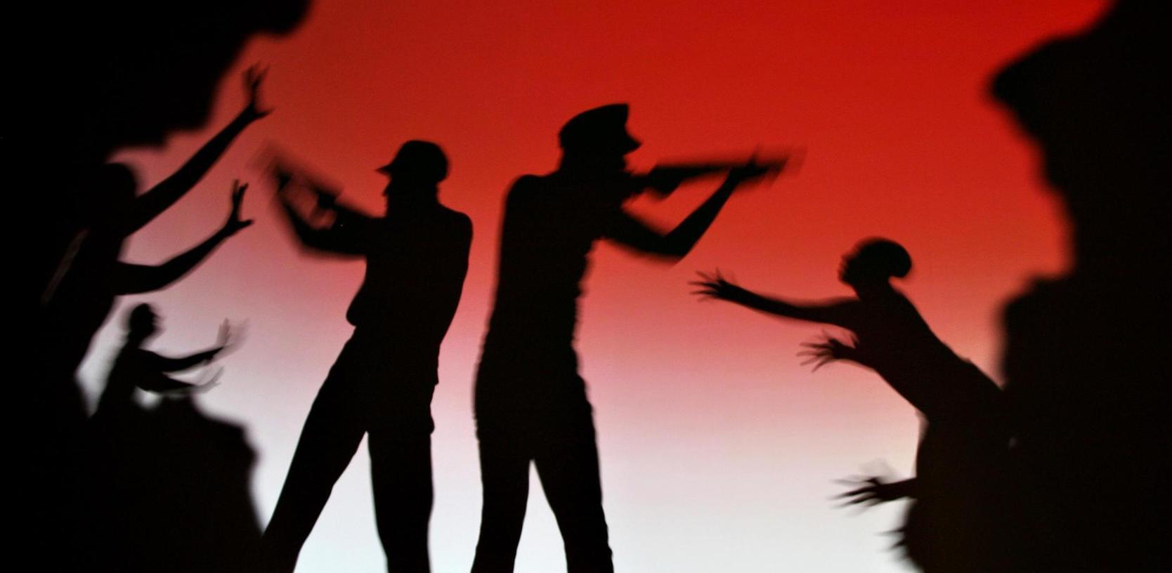 """Spektakuläre Schattenspiele: Die Akteure der Show """"Amazing Shadows"""" erhielten für ihre Kunst in der Stadthalle wiederholt spontanen Applaus."""