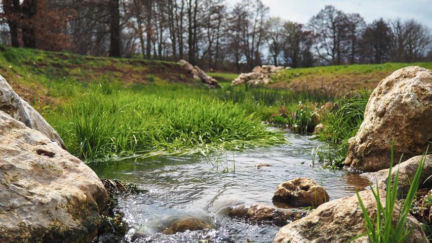 Wenn der Frühling in Oberasbach Einzug hält, findet man am renaturierten Asbachabschnitt im Norden des Stadtteils Altoberasbach einen ziemlich perfekten Ort zum Spazieren. Oft sind hier auch Enten unterwegs. Was Oberasbach noch zu bieten hat, stellen wir hier vor.