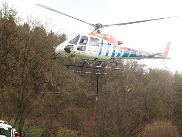 Direkt vom Chiemsee kommt der Hubschrauber, der die 25 Buchen am Hang der Burgruine Stierberg abtransportiert hat. Spezialisten aus Österreich haben die Bäume vorher vorsichtig gefällt.
