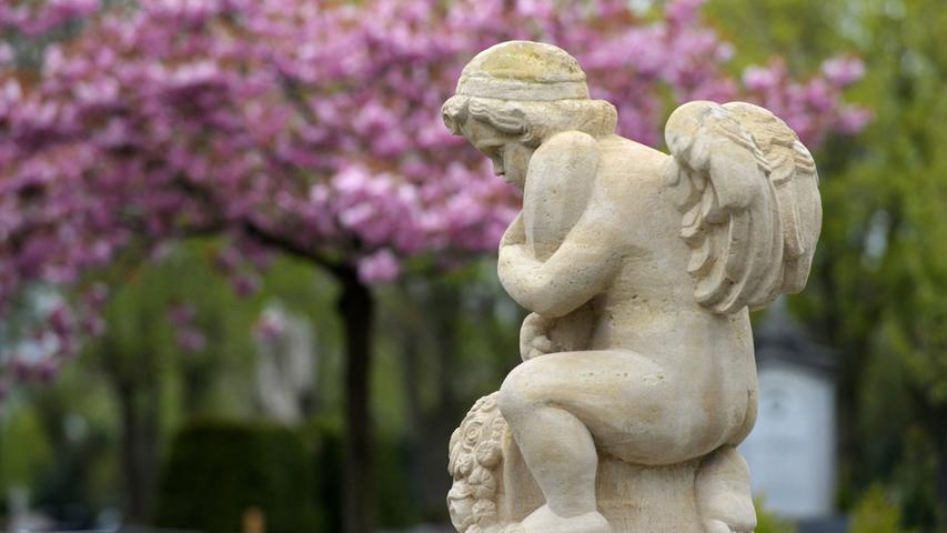 Der Fürther Friedhof - Eine Oase der Ruhe