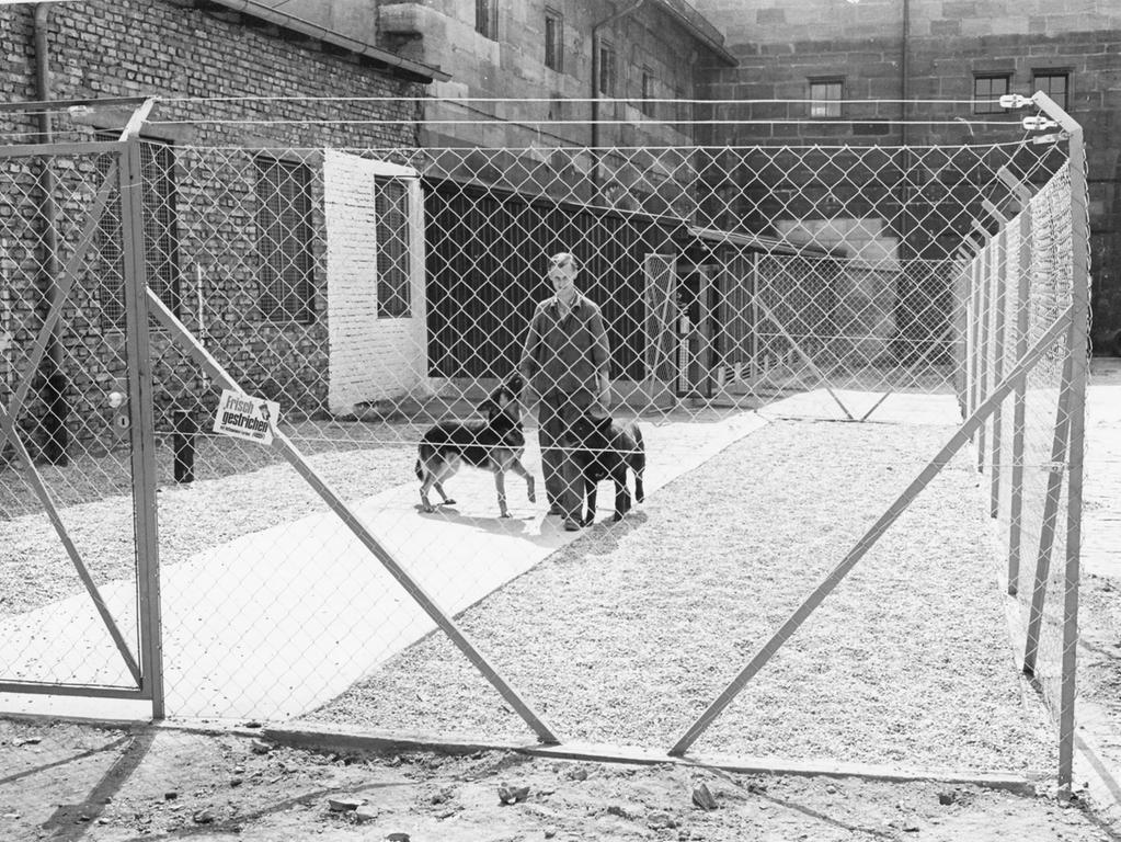 In diesem Zwinger warten die Polizeihunde auf ihren Einsatz. Sie sind darin jedoch nur während einer Dienstpause untergebracht; Feierabend nimmt sie Herrchen mit heim.