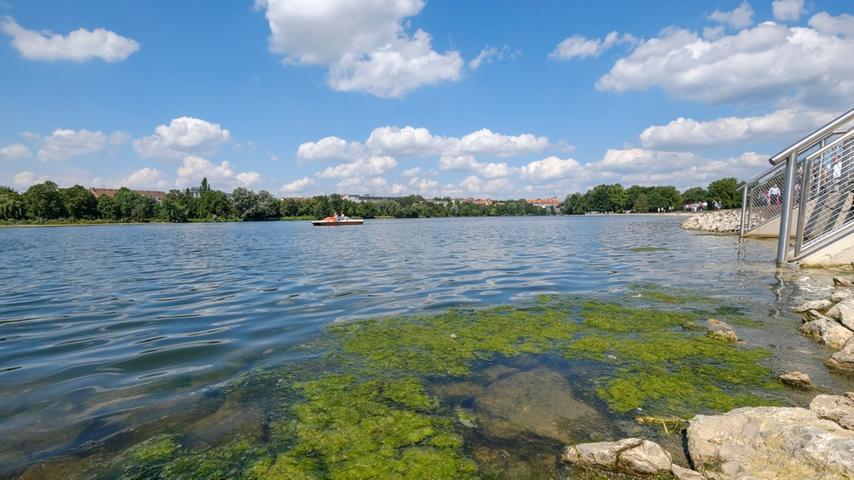 Wasser marsch! Hier wird die Norikusbucht am Wöhrder See geflutet