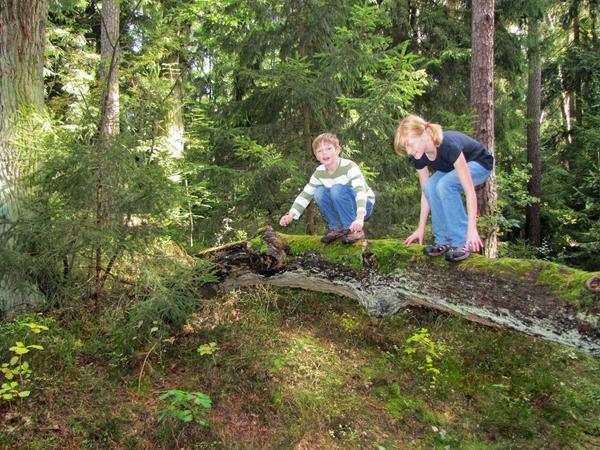 VGN-Tipp Wernloch_Kinderwanderung