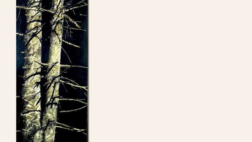 geb. 1956 in Fürth lebt in Fürth Spiegelung (2015) 120 x 80 x 4 cm Acryl und Öl auf Alu-Dibond