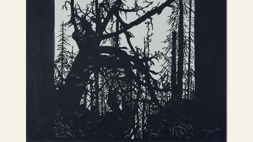 geb. 1941 in Bamberg lebt in Margetshöchheim Lusen (2013) 60 x 80 cm Papierschnitt