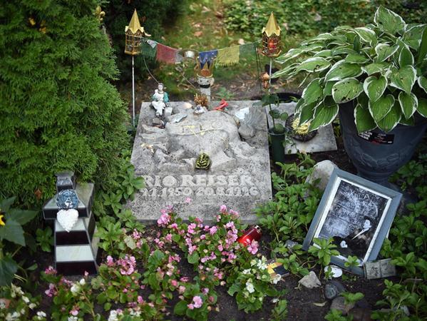Das Grab von Rio Reiser in Berlin. Zum 20. Todestag des Musikers, der einen Teil seiner Kindheit und Jugend in Nürnberg verbrachte, ist jetzt ein Album sowie ein Erinnerungsbuch seines Bruders erschienen.