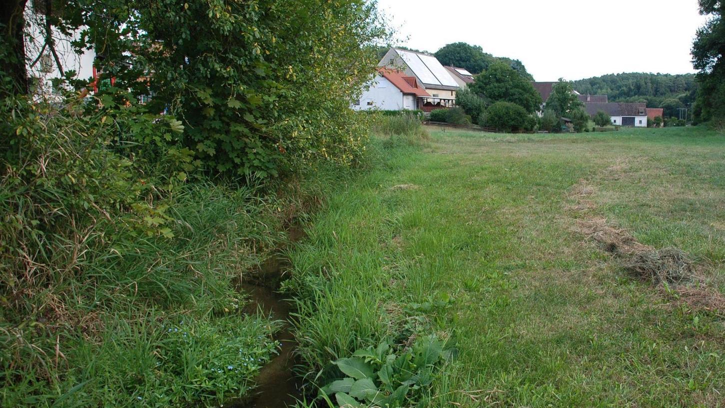 Der Wiesengrund in Unterschlauersbach mit Blick talabwärts: Hier wird der Bachlauf auf einer Länge von etwa 300 Metern neu angelegt.