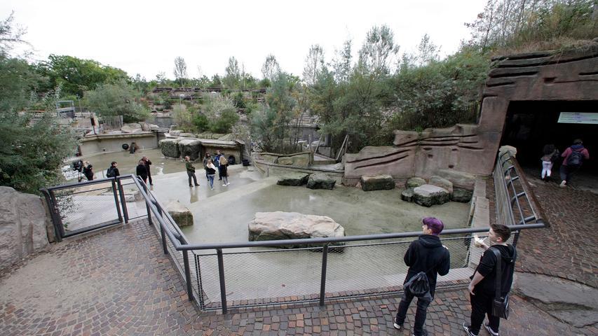 Auf dem Trockenen: Wasser in Delfinlagune abgelassen