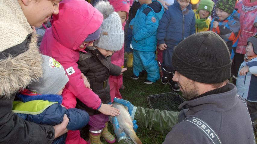 Ein paar Kinder trauten sich sogar, einen glitschigen karpfen anzufassen.
