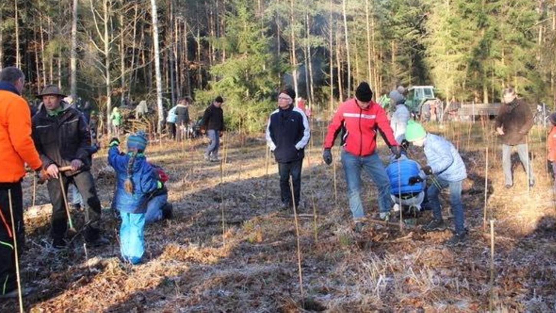 Mit Feuereifer waren die Schüler, Eltern und Lehrer, begleitet von Fachleuten bei der Sache. Bei strahlendem Sonnenschein und gerade noch frostfreiem Boden erreichten sie das Tagesziel von über 600 Bäumen.